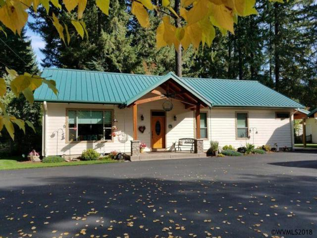 215 S Deer St, Detroit, OR 97342 (MLS #739901) :: HomeSmart Realty Group