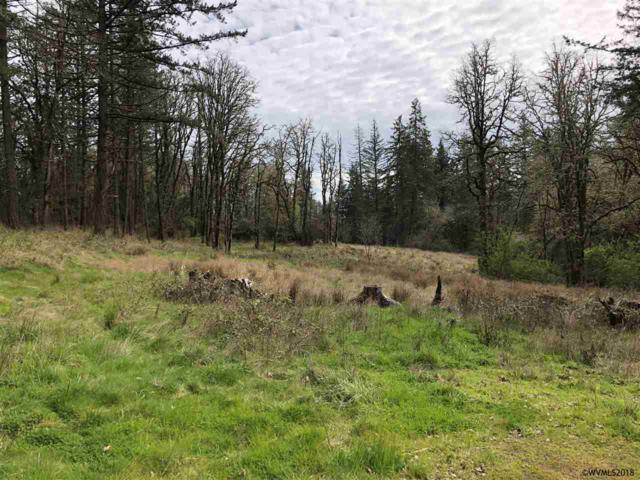 Natures Estates (18 Lot Subdivision) NW, Albany, OR 97321 (MLS #740188) :: HomeSmart Realty Group