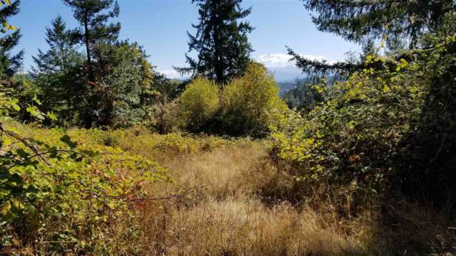 First Creek (T/L #808), Lebanon, OR 97355 (MLS #740205) :: Gregory Home Team