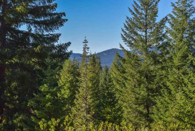 Highway 126 (Lot #301), Sweet Home, OR 97386 (MLS #740605) :: Five Doors Network