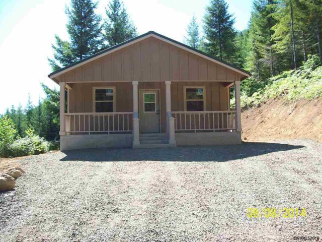 57700 Blowout Rd, Idanha, OR 97350 (MLS #740805) :: Gregory Home Team