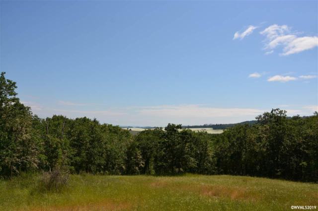 108 Commercial (Lot #108), Monroe, OR 97456 (MLS #743446) :: Gregory Home Team