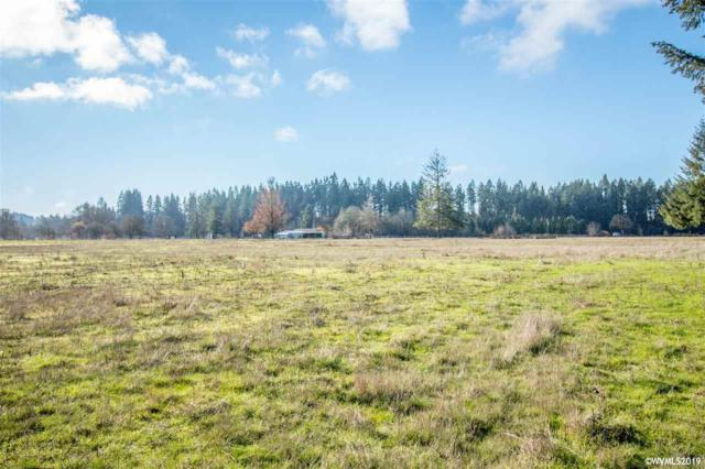 35619 Meridian (Next To), Scio, OR 97374 (MLS #743481) :: HomeSmart Realty Group
