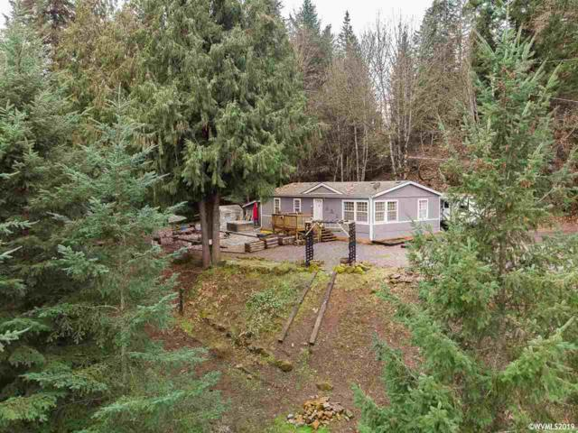 30125 Ingram Rd, Lebanon, OR 97355 (MLS #743513) :: HomeSmart Realty Group