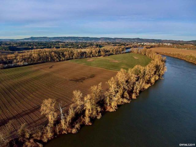 0 Ash Island, Dundee, OR 97115 (MLS #744632) :: Song Real Estate