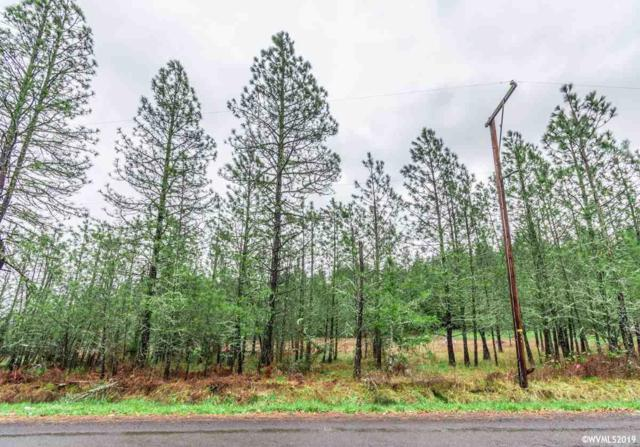 Totem Pole (Tl #1105), Lebanon, OR 97355 (MLS #744663) :: Song Real Estate
