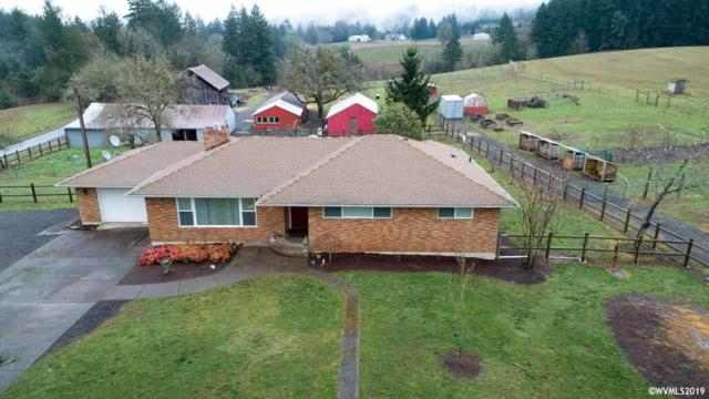 7105 SE Eola Hills Rd, Amity, OR 97101 (MLS #744723) :: Gregory Home Team