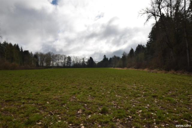 38837 (BEHIND) Scravel Hill NE, Albany, OR 97321 (MLS #744784) :: Premiere Property Group LLC