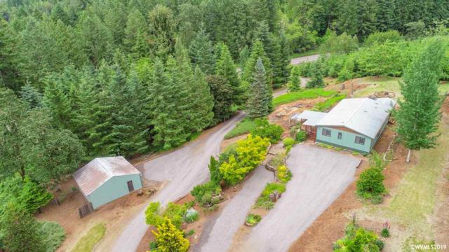 41023 Highway 228, Sweet Home, OR 97386 (MLS #748857) :: Gregory Home Team