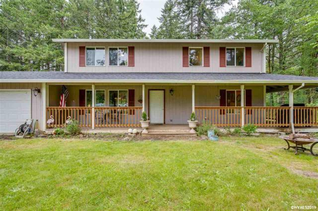 12619 S Wilderness Way, Molalla, OR 97038 (MLS #749025) :: Hildebrand Real Estate Group