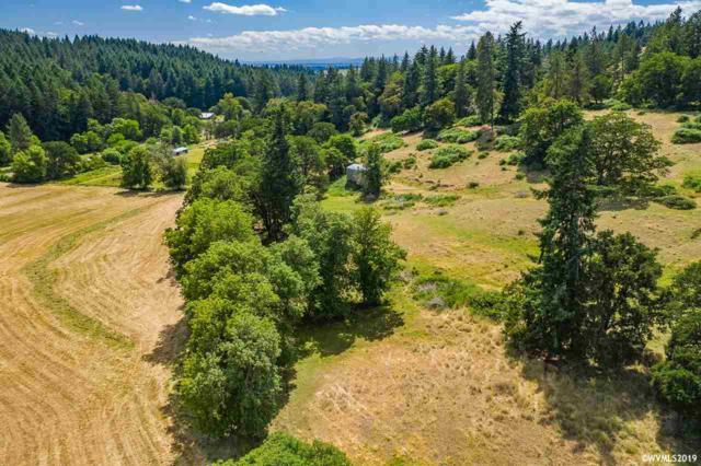 35553 Cochran Creek Dr, Brownsville, OR 97327 (MLS #750348) :: Hildebrand Real Estate Group