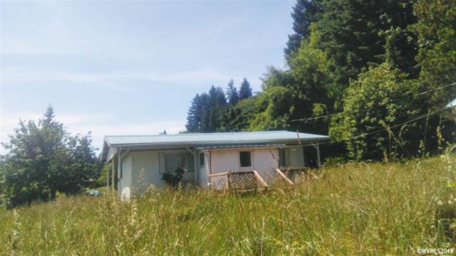 253 Second St, Falls City, OR 97344 (MLS #750967) :: Gregory Home Team