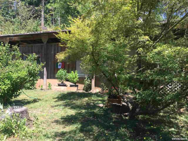 1029 Marys Peak Rd, Blodgett, OR 97326 (MLS #751026) :: Gregory Home Team