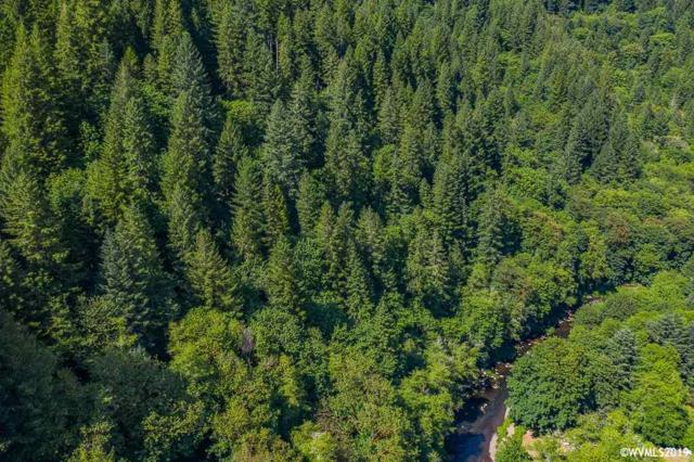 Lot on Cecil, Alsea, OR 97324 (MLS #751079) :: Gregory Home Team