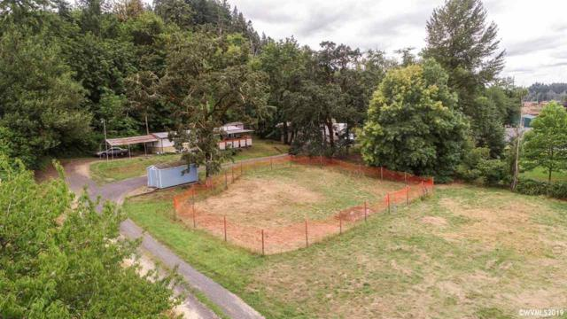 28130 Riggs Hill Rd, Sweet Home, OR 97386 (MLS #752242) :: Gregory Home Team