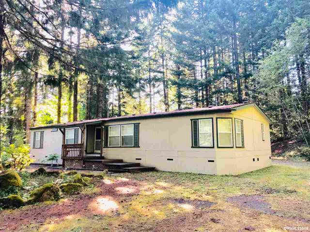 195 Guy Moore Dr, Detroit, OR 97342 (MLS #754999) :: Song Real Estate