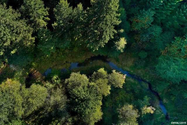 0 Gilbert Creek, Willamina, OR 97396 (MLS #756298) :: Hildebrand Real Estate Group