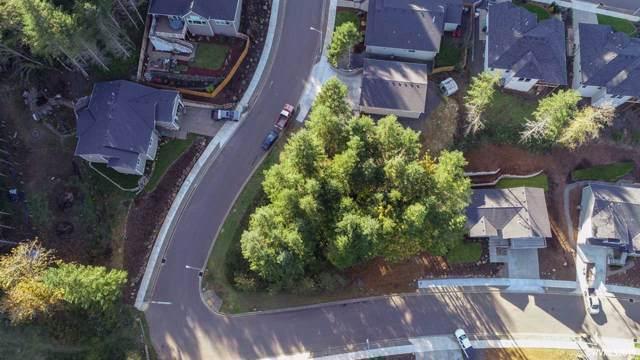 Timber (& Taylor Creek) (Lot #25), Sweet Home, OR 97386 (MLS #756576) :: The Beem Team LLC