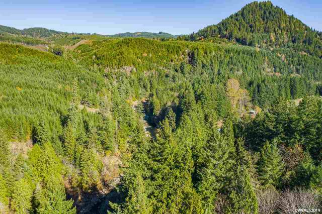 Highway 20 (Lot# 600), Sweet Home, OR 97345 (MLS #756741) :: Gregory Home Team