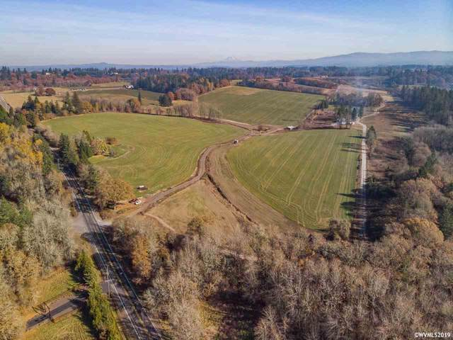 32998 S Hwy 213, Molalla, OR 97038 (MLS #757165) :: Sue Long Realty Group