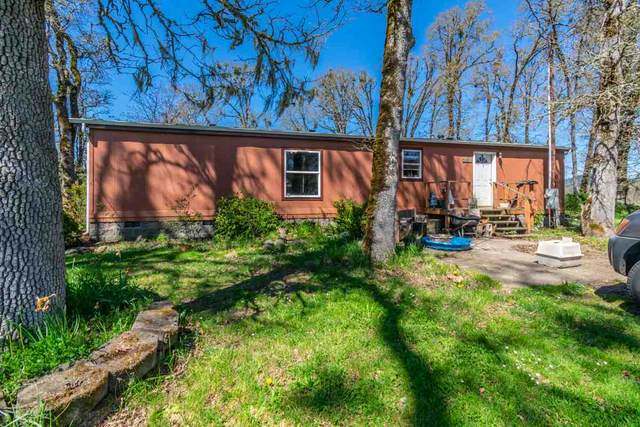 31019 Ty Valley Rd, Lebanon, OR 97355 (MLS #762617) :: Sue Long Realty Group