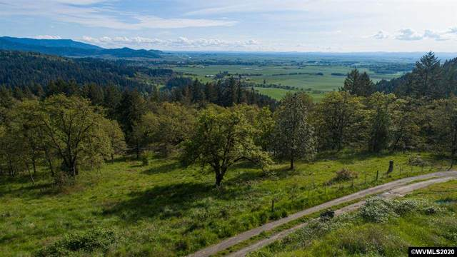 29091 Sheep Head Rd, Brownsville, OR 97327 (MLS #762844) :: Gregory Home Team