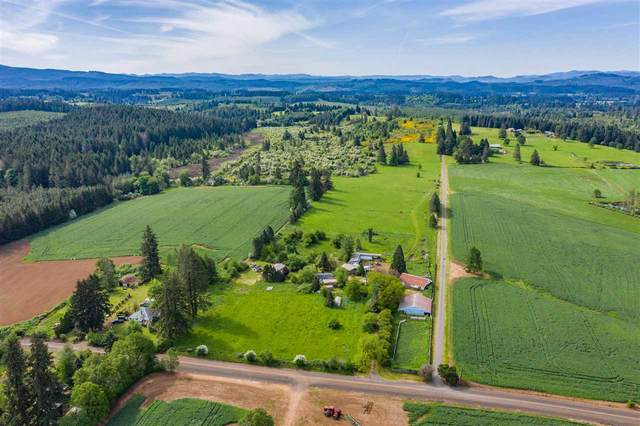 40556 Providence Dr, Scio, OR 97374 (MLS #763458) :: Gregory Home Team