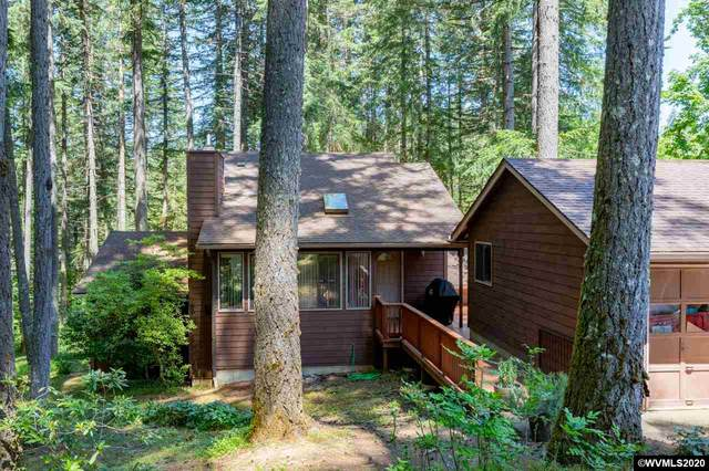 31849 Mcloughlin Dr, Philomath, OR 97370 (MLS #764144) :: Sue Long Realty Group