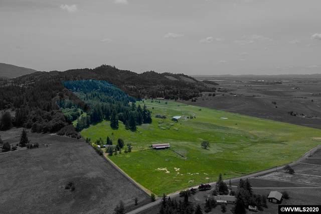 34586 & 34820 Ranch Dr, Brownsville, OR 97327 (MLS #764276) :: Hildebrand Real Estate Group