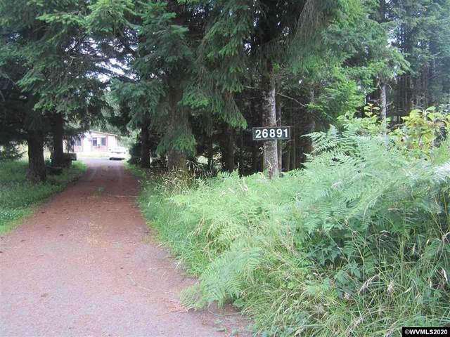 26891 Alsea Deadwood, Alsea, OR 97324 (MLS #765591) :: Song Real Estate