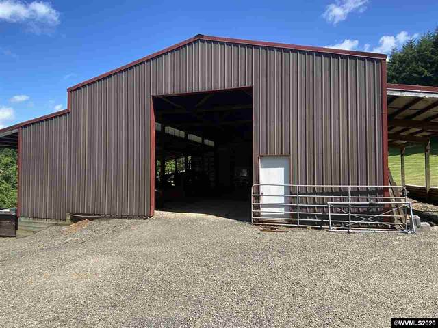 37166 Mountain Home Dr, Brownsville, OR 97327 (MLS #765877) :: Coho Realty