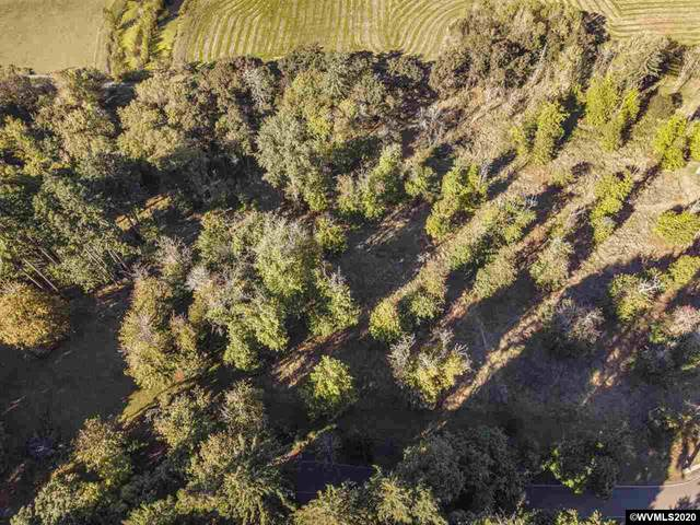 Victory (Lot #3), Lebanon, OR 97355 (MLS #768979) :: Sue Long Realty Group