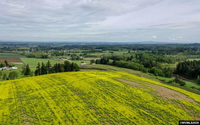 9900 S Wildcat (Next To), Molalla, OR 97038 (MLS #769953) :: Premiere Property Group LLC