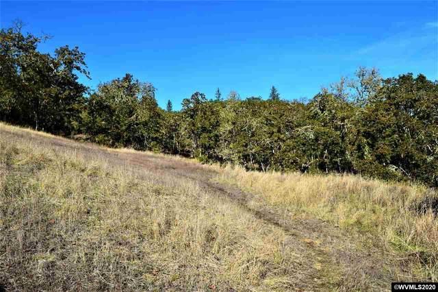 0 Newport, Roseburg, OR 97470 (MLS #769974) :: Song Real Estate