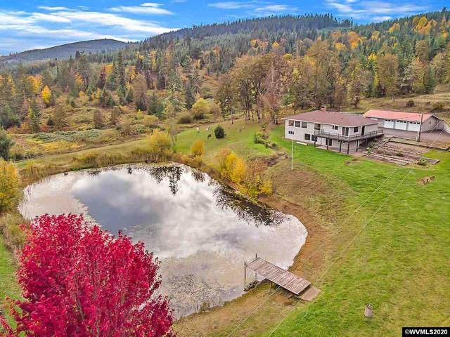29900 Santiam Hwy, Lebanon, OR 97355 (MLS #770250) :: Kish Realty Group