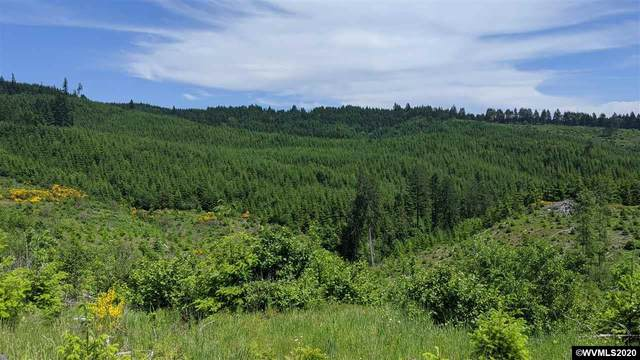 NW Timmerman (#3), Forest Grove, OR 97116 (MLS #771337) :: Change Realty
