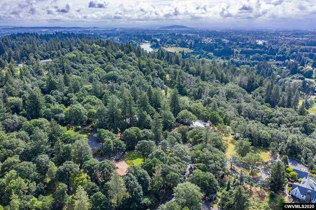 Scenic (Lot Next To), Albany, OR 97321 (MLS #771794) :: The Beem Team LLC