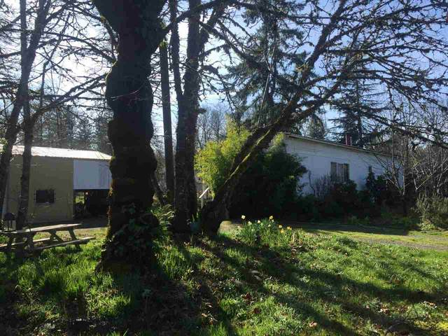 20456 Ferry Rd, Stayton, OR 97383 (MLS #772295) :: Kish Realty Group