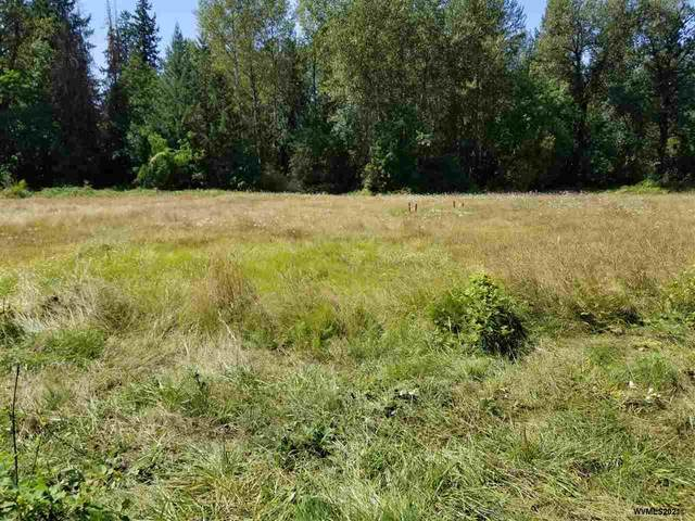 Hidden Meadow Estates (Lot #3), Lebanon, OR 97355 (MLS #772965) :: Song Real Estate
