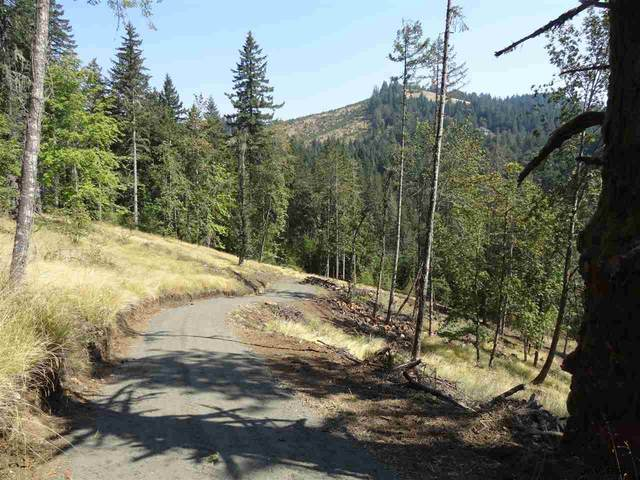 24845 Hidden Valley (Across From), Philomath, OR 97370 (MLS #772989) :: Change Realty