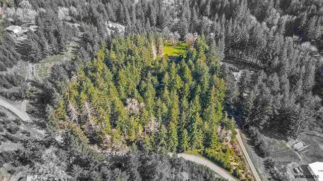 Canyon View (Lot 609), Dallas, OR 97338 (MLS #775973) :: RE/MAX Integrity