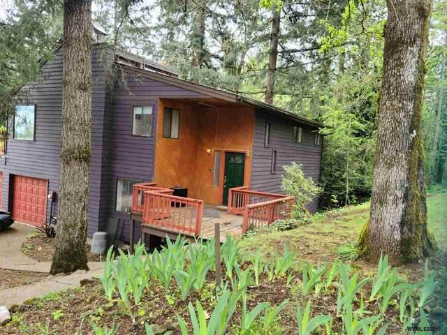 1210 Albert St SE, Salem, OR 97302 (MLS #776626) :: Song Real Estate