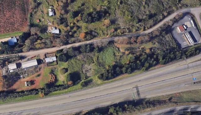 9999 Squirrel Hill SE, Salem, OR 97306 (MLS #777065) :: Premiere Property Group LLC