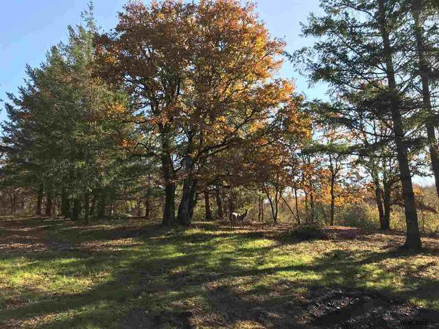 10635 Oak SE, Salem, OR 97306 (MLS #778209) :: Oregon Farm & Home Brokers