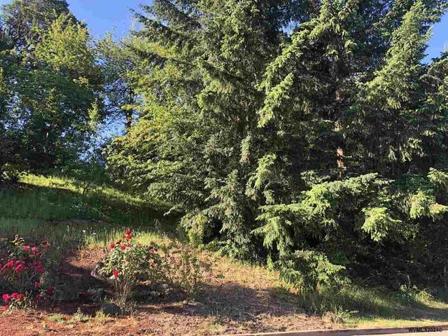 1782 Sunburst Ter NW, Salem, OR 97304 (MLS #778778) :: Kish Realty Group