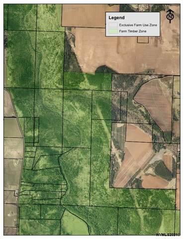Silver Creek Canyon (R38780), Silverton, OR 97381 (MLS #779326) :: Kish Realty Group