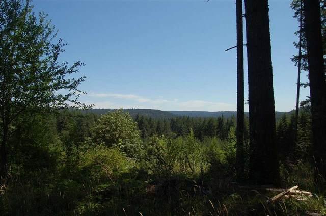 Silver Falls, Silverton, OR 97381 (MLS #780792) :: Premiere Property Group LLC