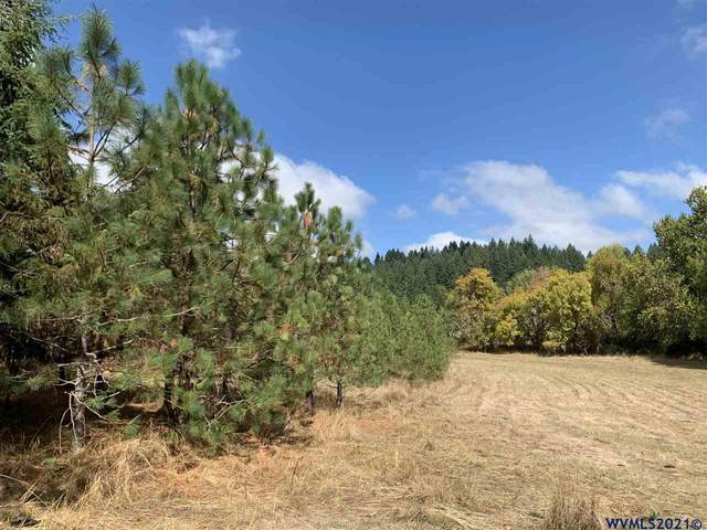 38551 Buck Hill (West Of), Lebanon, OR 97355 (MLS #783853) :: Song Real Estate