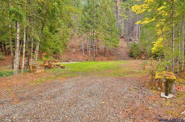 235 Clifford E, Detroit, OR 97342 (MLS #785327) :: Sue Long Realty Group
