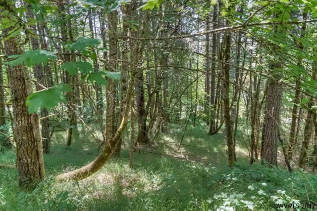 NW Wildview (Lot #5), Corvallis, OR 97330 (MLS #721834) :: HomeSmart Realty Group